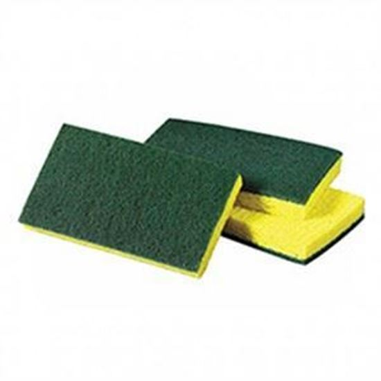 Picture of Scrub and Sponge