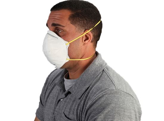 Picture of N95 Particulate Dust Masks - Double Straps