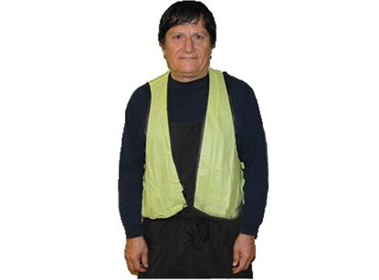 Picture of Lime Green Shield Safety Vest - Front String Tie